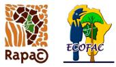 ecofac 2